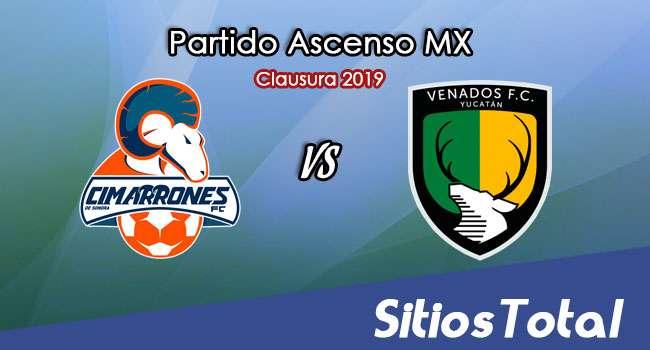 Ver Cimarrones de Sonora vs Venados en Vivo – Ascenso MX en su Torneo de Apertura 2019