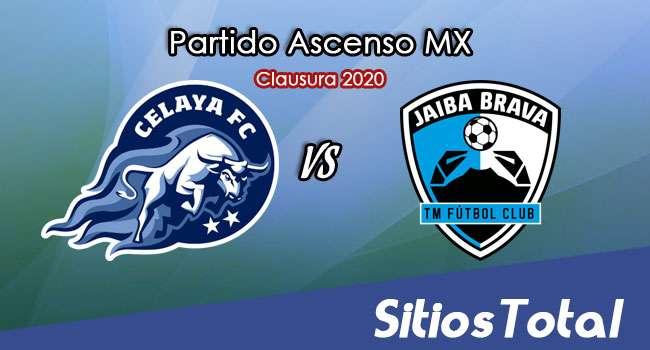 Ver Celaya vs Tampico Madero en Vivo – Ascenso MX en su Torneo de Clausura 2020