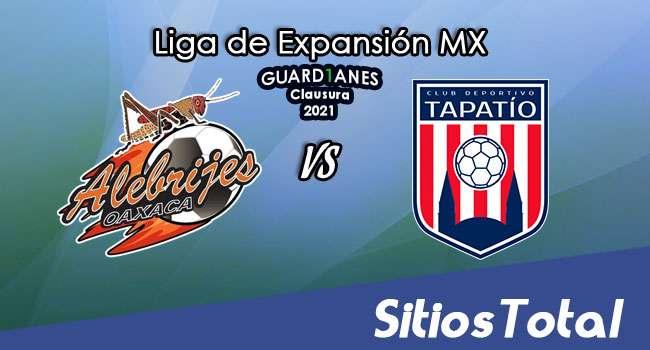 Alebrijes de Oaxaca vs Tapatío en Vivo – Canal de TV, Fecha, Horario, MxM, Resultado – J3 de Guardianes Clausura 2021 de la  Liga de Expansión MX