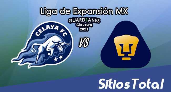 Celaya vs Pumas Tabasco en Vivo – Canal de TV, Fecha, Horario, MxM, Resultado – J2 de Guardianes Clausura 2021 de la  Liga de Expansión MX