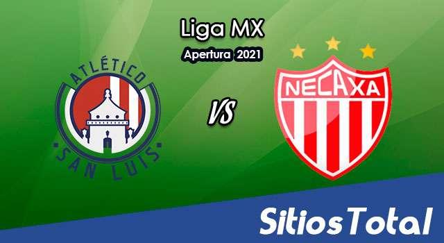 Atlético San Luis vs Necaxa en Vivo – Canal de TV, Fecha, Horario, MxM, Resultado – J4 de Apertura 2021 de la Liga MX