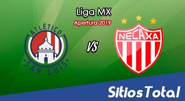 Ver Atlético San Luis vs Necaxa en Vivo – Apertura 2019 de la Liga MX