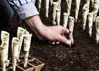 Выгодное вложение средств при кризисе