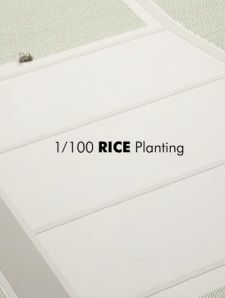 1/100 Rice Planting's Cover Image