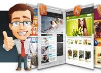 Мотивация покупок Интернет-проектов в сети