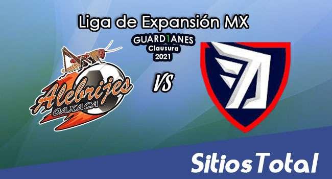 Alebrijes de Oaxaca vs Tepatitlán FC en Vivo – Canal de TV, Fecha, Horario, MxM, Resultado – J2 de Guardianes Clausura 2021 de la  Liga de Expansión MX