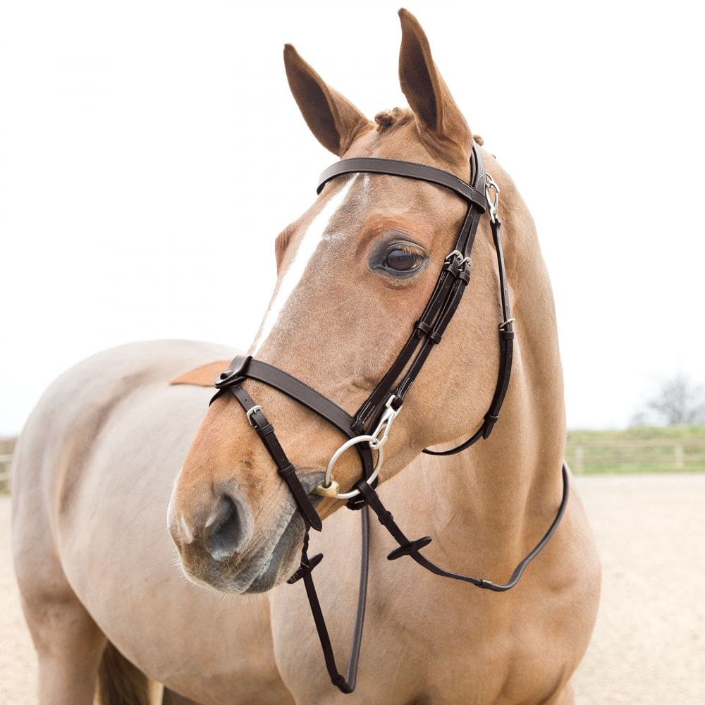 Horze-Supreme-Sparta-Hunter-Bridle-with-Wide-Browband-and-Detachable-Flash miniature 30