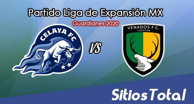 Celaya vs Venados FC en Vivo – Liga de Expansión MX – Guardianes 2020 – Miércoles 28 de Octubre del 2020