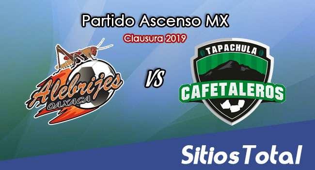 Ver Alebrijes de Oaxaca vs Cafetaleros de Chiapas en Vivo – Ascenso MX en su Torneo de Apertura 2019