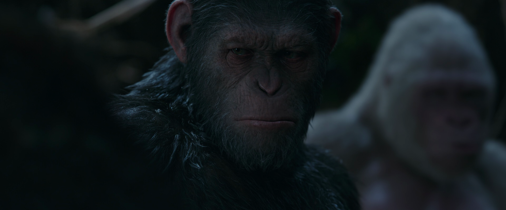 War for the Planet of the Apes 2017 1080p 10bit BluRay 7 1 x265 HEVC-MZABI