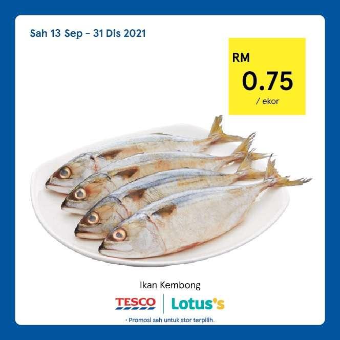 Tesco Catalogue(13 September)