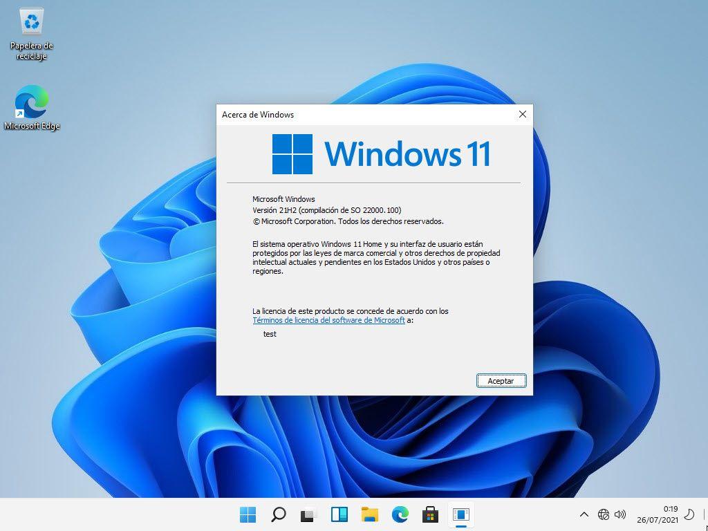 windows 11 lite version