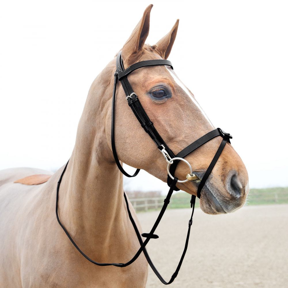 Horze-Supreme-Sparta-Hunter-Bridle-with-Wide-Browband-and-Detachable-Flash miniature 19