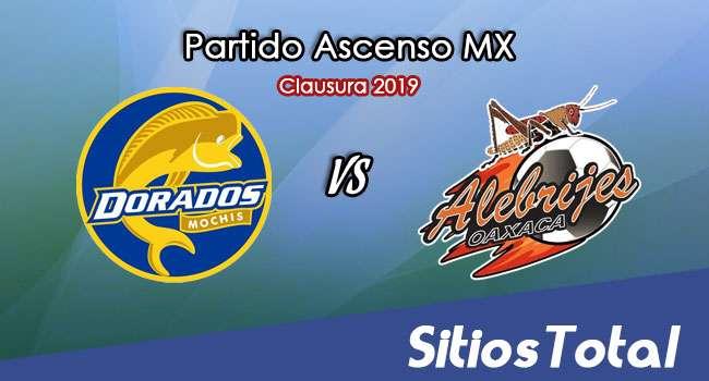 Ver Dorados de Sinaloa vs Alebrijes de Oaxaca en Vivo – Ascenso MX en su Torneo de Apertura 2019