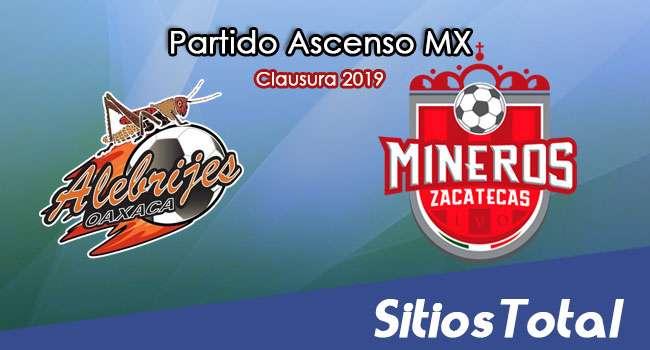 Ver Alebrijes de Oaxaca vs Mineros de Zacatecas en Vivo – Partido de Ida – Cuartos de Final – Ascenso MX en su Torneo de Clausura 2019