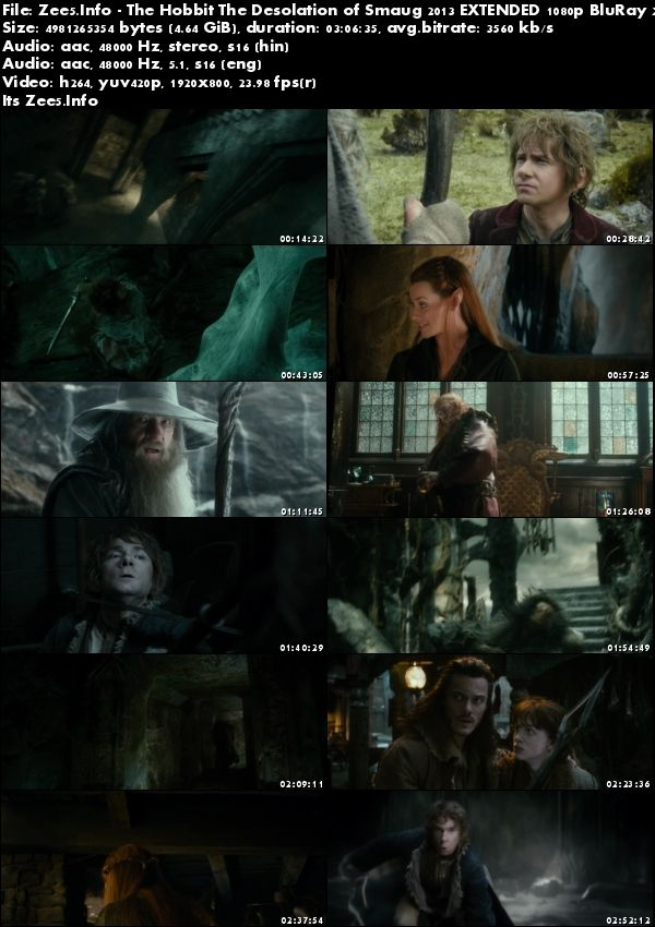 The Hobbit The Desolation of Smaug 2013 BRRip 1080p Hindi English