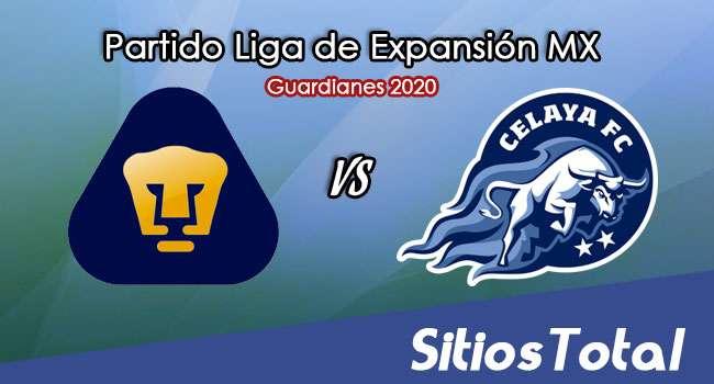 Pumas Tabasco vs Celaya en Vivo – Liga de Expansión MX – Guardianes 2020 – Miércoles 16 de Septiembre del 2020
