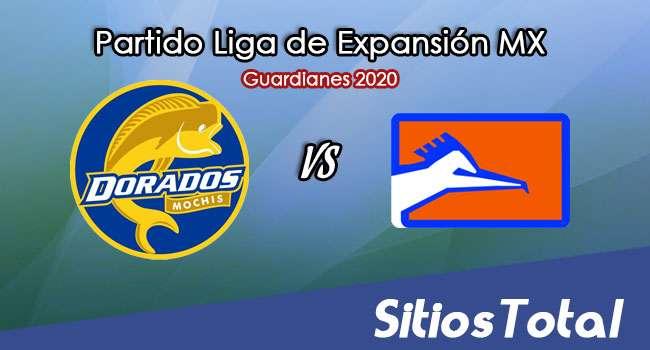 Dorados de Sinaloa vs Correcaminos en Vivo – Liga de Expansión MX – Guardianes 2020 – Miércoles 16 de Septiembre del 2020