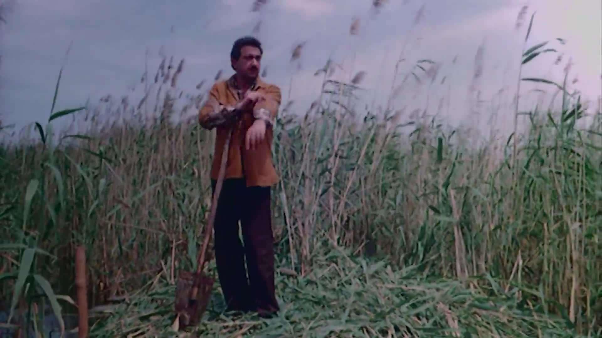[فيلم][تورنت][تحميل][العار][1982][1080p][Web-DL] 11 arabp2p.com