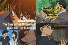 Detective Conan Magic File 2: Kudou Shinichi - The Case of the Mysterious Wall and the Black Lab's Cover Image