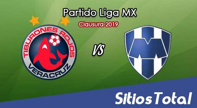 Ver Veracruz vs Monterrey en Vivo – Clausura 2019 de la Liga MX