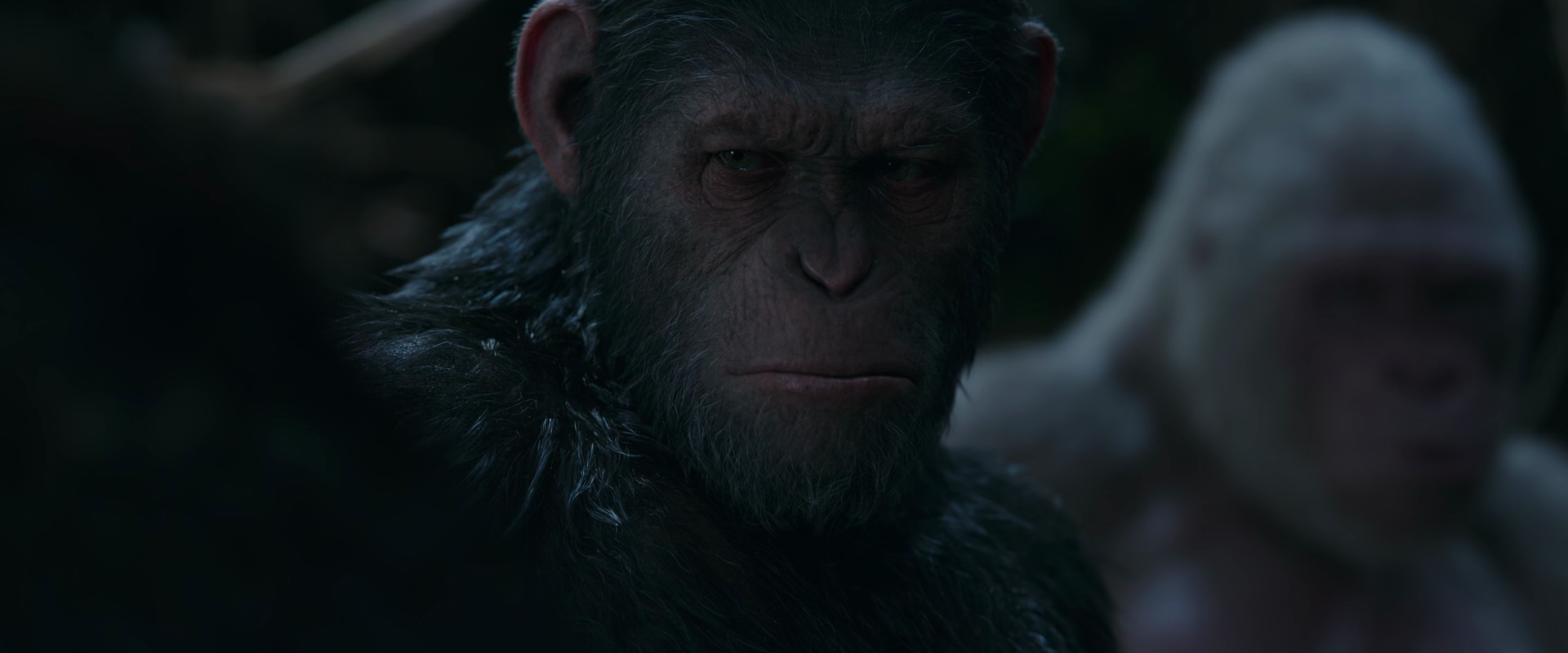 War for the Planet of the Apes 2017 1080p 10bit BluRay 5 1 x265 HEVC-MZABI