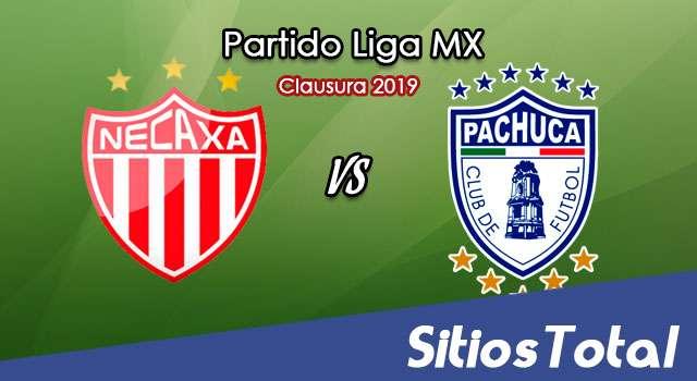 Ver Necaxa vs Pachuca en Vivo – Clausura 2019 de la Liga MX