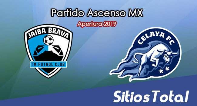 Ver Tampico Madero vs Celaya en Vivo – Vuelta Cuartos de Final – Ascenso MX en su Torneo de Apertura 2019