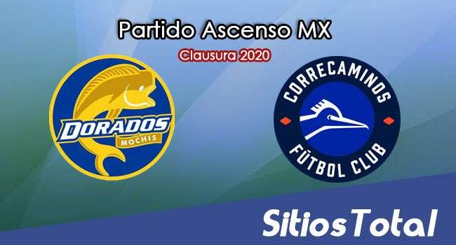 Ver Dorados de Sinaloa vs Correcaminos en Vivo – Ascenso MX en su Torneo de Clausura 2020