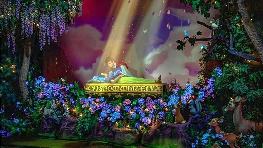 Detalles sobre los Parques Temáticos de Disneyland Resort