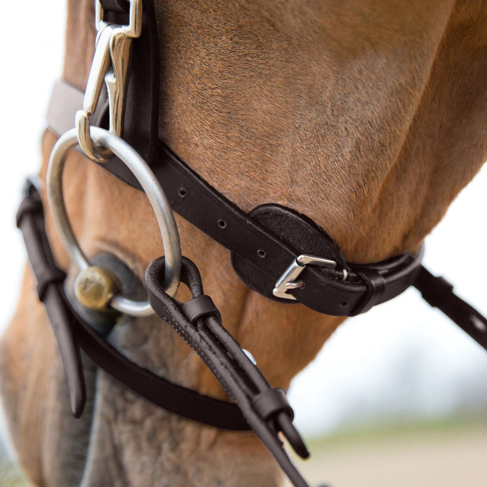 Horze-Supreme-Sparta-Hunter-Bridle-with-Wide-Browband-and-Detachable-Flash miniature 32