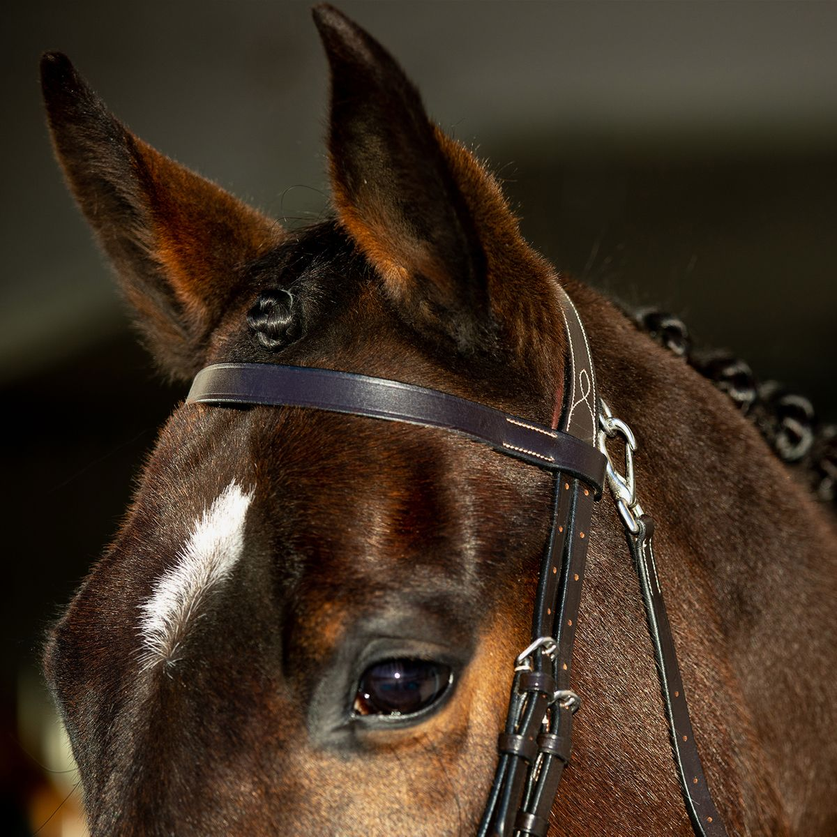Horze-Supreme-Sparta-Hunter-Bridle-with-Wide-Browband-and-Detachable-Flash miniature 25