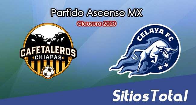 Ver Cafetaleros de Chiapas vs Celaya en Vivo – Ascenso MX en su Torneo de Clausura 2020