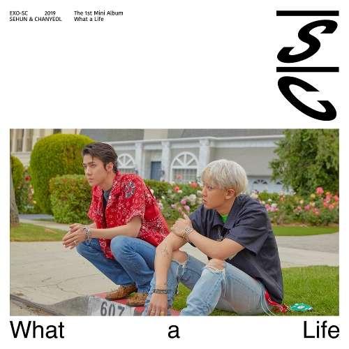 Download Mini Album Exo Sc Sehun Chanyeol What A