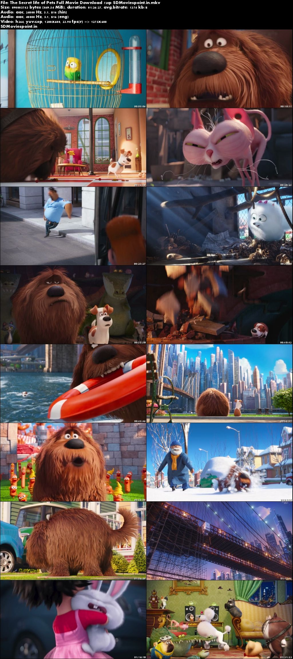 Screen Shot The Secret Life of Pets (2016) Full HD Movie Download Hindi Dubbed