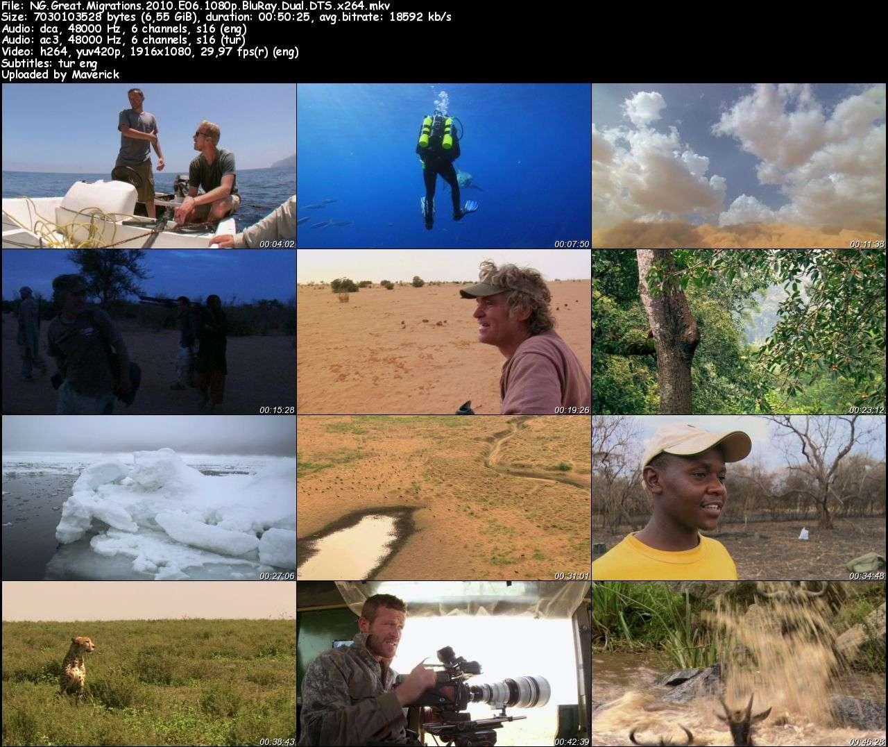 Büyük Göçler - 2010 Boxset BluRay 1080p DuaL MKV indir
