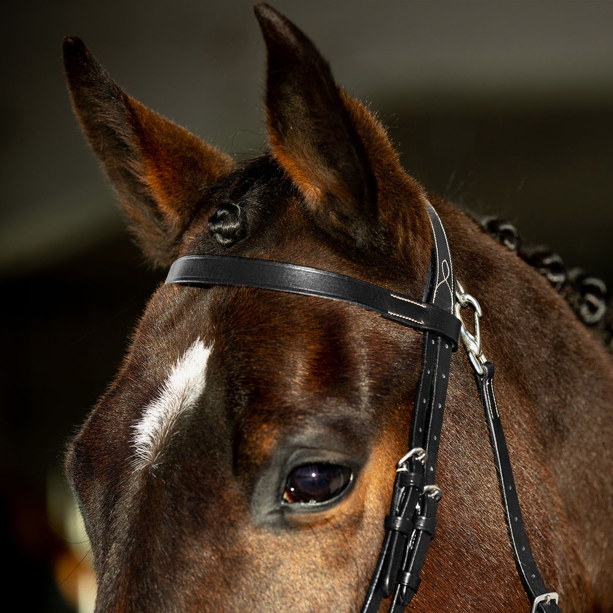 Horze-Supreme-Sparta-Hunter-Bridle-with-Wide-Browband-and-Detachable-Flash miniature 14