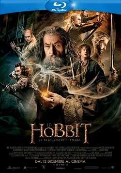 Lo Hobbit - La Desolazione Di Smaug - Extended Version (2013).avi BDRip AC3 ITA