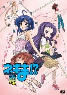 Negima!? Natsu Special!?'s Cover Image
