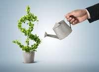 Инвестирование. Нюансы и подводные камни