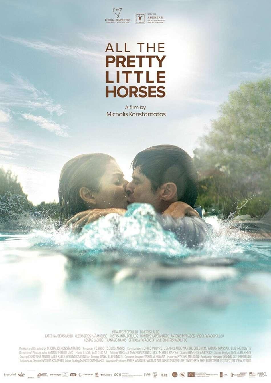 Μικρά όμορφα άλογα Poster Πόστερ