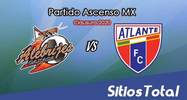Ver Alebrijes de Oaxaca vs Atlante en Vivo – Ascenso MX en su Torneo de Clausura 2020