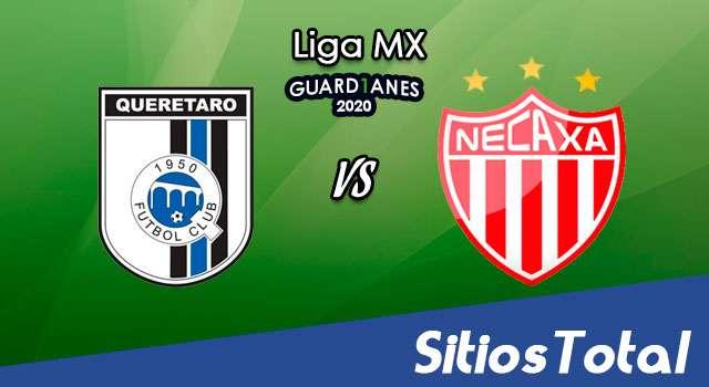 Querétaro vs Necaxa en Vivo – Liga MX – Guardianes 2020 – Sábado 24 de Octubre del 2020