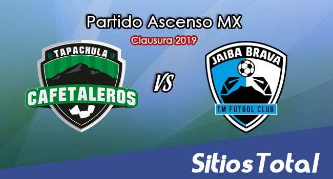 Ver Cafetaleros de Tapachula vs Tampico Madero en Vivo – Ascenso MX en su Torneo de Clausura 2019