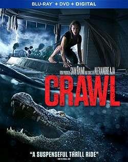 Crawl - Intrappolati (2019).mkv MD MP3 AC3 1080p Untouched BluRay - iTA