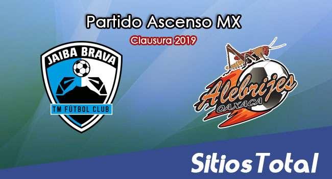 Ver Tampico Madero vs Alebrijes de Oaxaca en Vivo – Ascenso MX en su Torneo de Clausura 2019