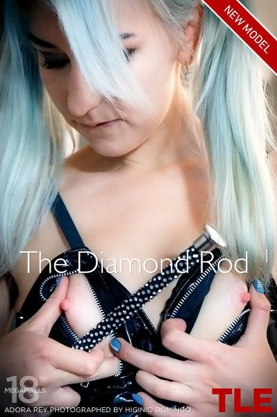 _TheLifeErotic-The-Diamond-Rod-1-cover.jpg