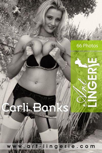 ArtLingerie - 2010-12-20 - Carli Banks - 2190