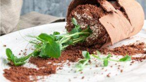 Toprak Ana yemeği nasıl yapılır? Toprak Ana yemeği tarifi ve malzemeleri