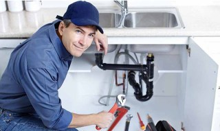 Light Plumbing Repairs New Trier 55031